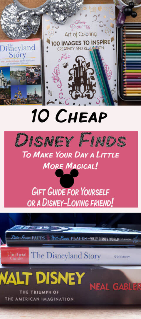 10 Affordable Disney Finds to Make Your Day a Little More Magical! Gift guide to coloring books, kitchen gadgets and Disney Park Guide Books found on Amazon!