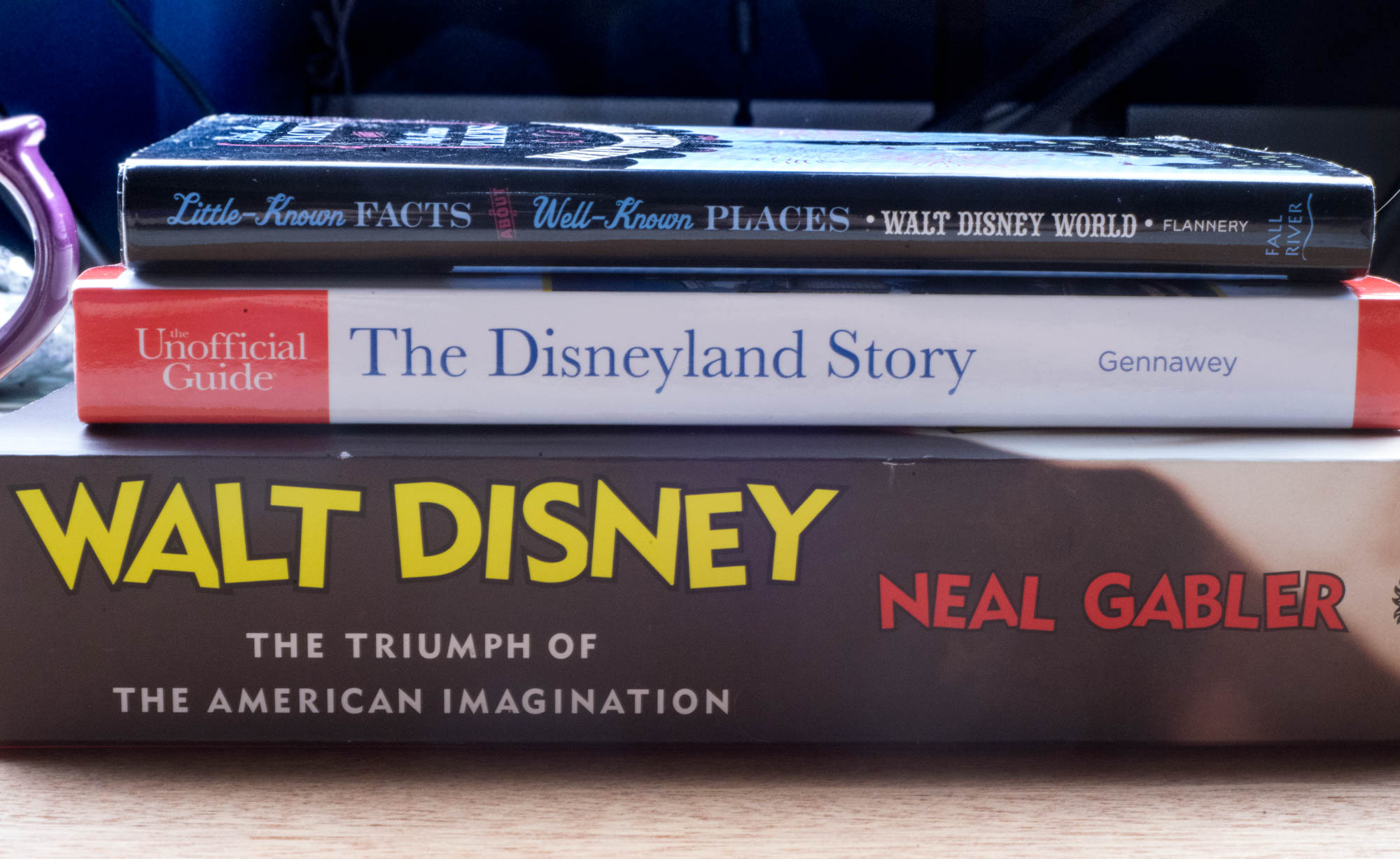 Stack of Disney Historical Books -The Disneyland Story and Triumph of The American Imagination